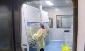 首個P2+實驗室建成,松滋可以進行核酸檢測了