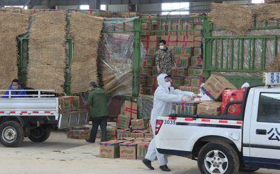 风雪中,48吨新鲜果蔬从海南抵达松滋