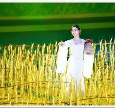 荆州市第五届运动会开幕式---文艺演出随拍
